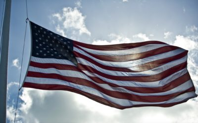 Top Ten Reasons to Lower Flags to Half-Staff for the Daily Pre-Born Victims of Abortion